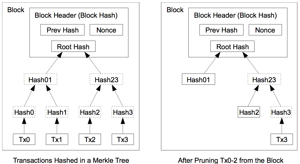 Merkle Tree Prunning